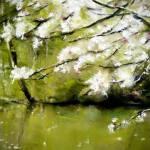 Ambiance à l'étang de Guiguen - Peinture au pastel sec par l'artiste peintre Isabelle Douzamy - 40x50 cm (encadré)