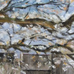 Arbre en fleurs - Pastel sec par Isabelle Douzamy - 30x40cm - 500€