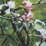 Fleurs de pommier - Pastel sec par Isabelle Douzamy - 50x65 cm - 700€