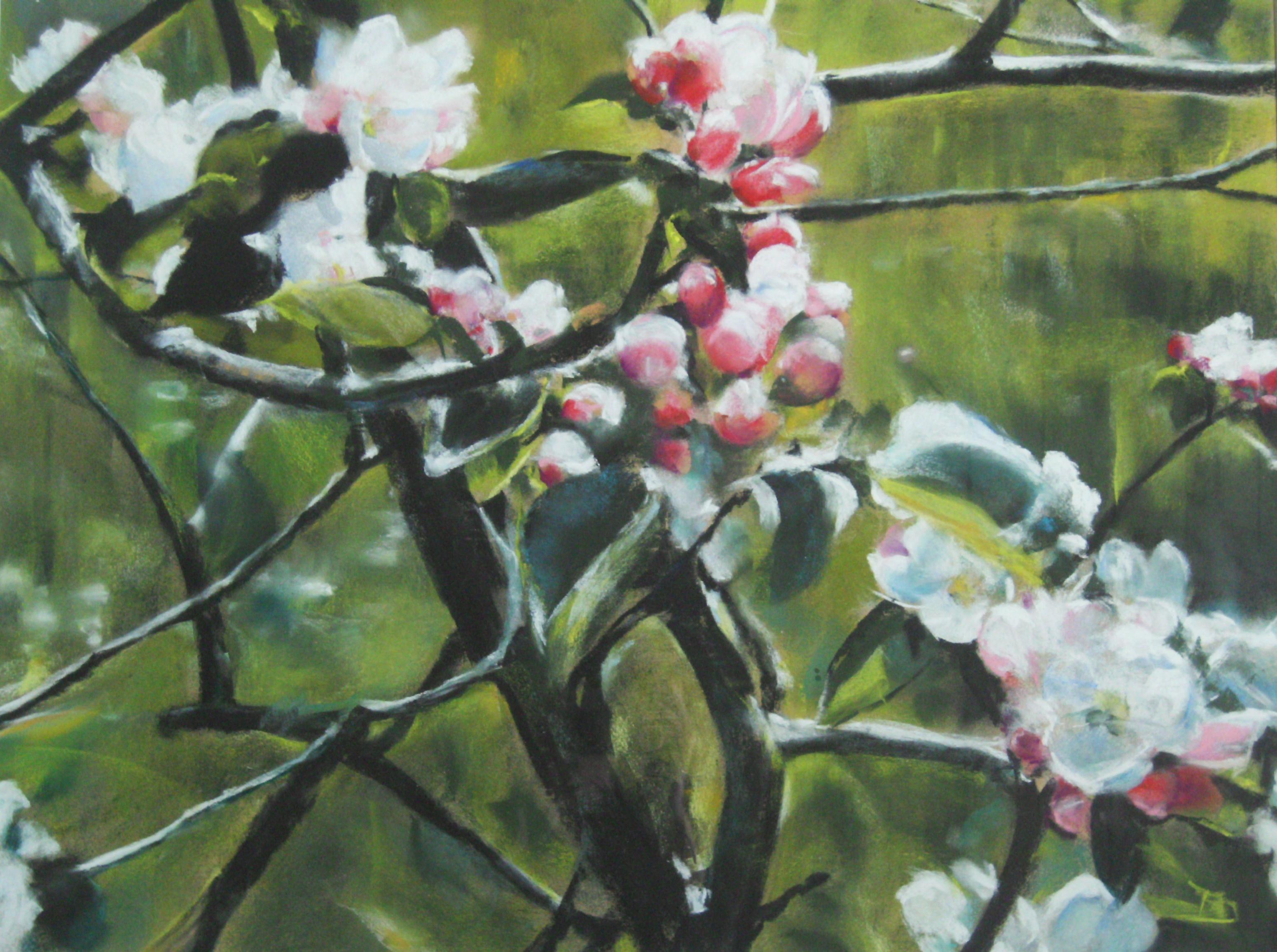 Fleurs de pommier - Pastel sec par Isabelle Douzamy - 50x65 cm
