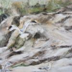Les mouettes - Pastel sec par Isabelle Douzamy artiste peintre