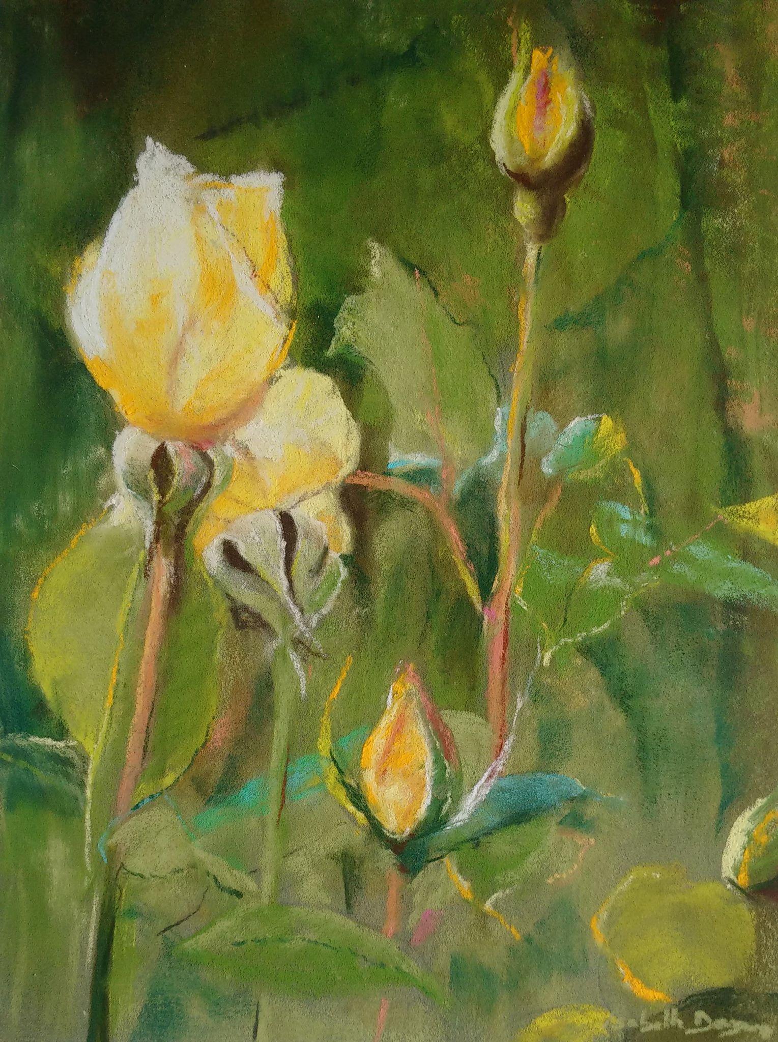 Les roses jaunes - Peinture au pastel sec par l'artiste peintre Isabelle Douzamy - 40x50 cm