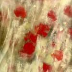 Les Coquelicots - Nous voulons des Coquelicots - Peinture au pastel sec par l'artiste peintre Isabelle Douzamy - 17x41cm et 30x57cm encadré