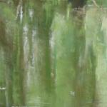 Reflets sur l'étang de Beaulieu - Peinture au pastel sec par l'artiste peintre Isabelle Douzamy - 57x30 cm